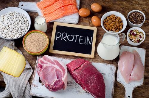 たんぱく質protein