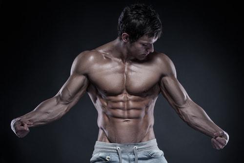 筋肉大胸筋腹筋
