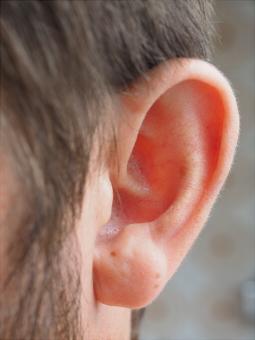 耳垢の確認