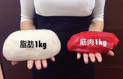 脂肪と筋肉