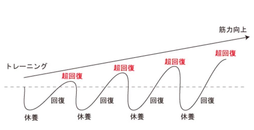 超回復 グラフ