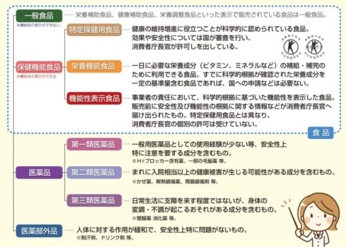 食品と医薬品の分類を表にまとめた画像