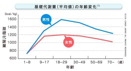 基礎代謝量 グラフ