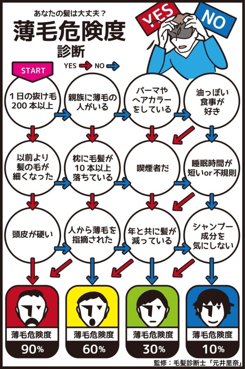 薄毛危険度診断yes/noチャート