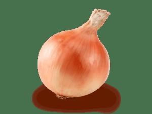 玉ねぎ 画像